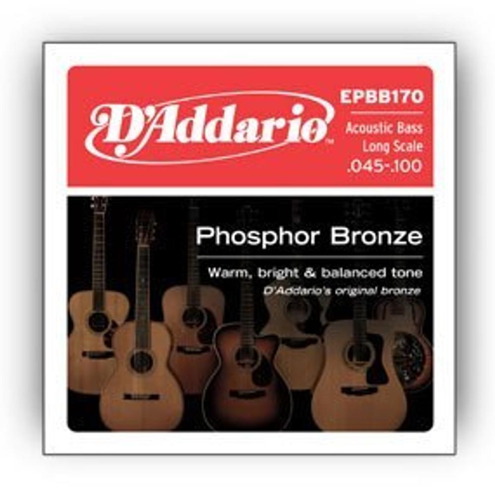 DAddario DAddario EPBB170 Phosphor Bronze Acoustic Bass, Long Scale, 45-100