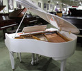 DH Baldwin DH Baldwin C142 Baby Grand or Polished White or 53672