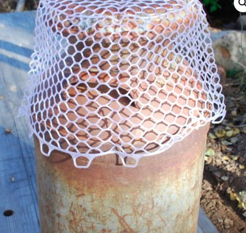 Rising Brookie Replacement Net