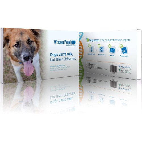 Mars Veterinary Wisdom Panel 3.0 Canine DNA Test Dog Breed Identification ID Kit