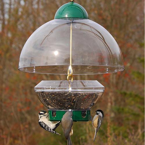Droll Yankees Big Top Squirrel Proof Bird Feeder BTG
