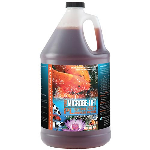 Microbe_Lift PL _1_ gallon _container 10PLG4 Microbe Lift PL 1 Gallon Koi Pond Beneficial Bacteria Clarifier 10PLG4