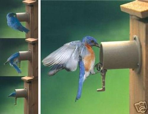 Audubon Bird Guardian Screw on Predator Guard (SE997)