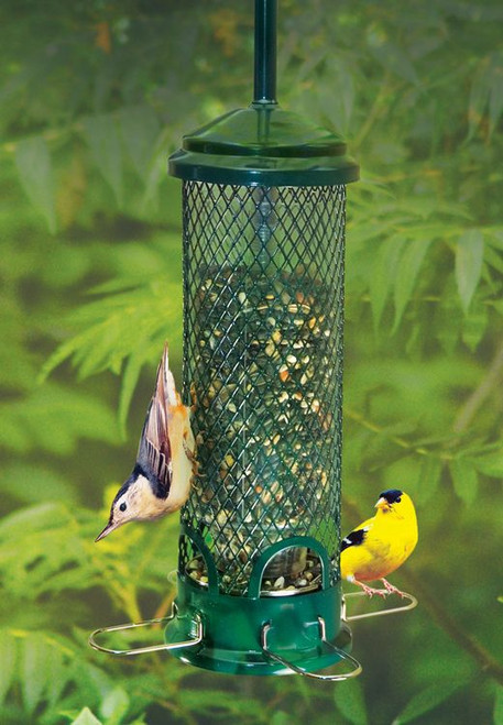 Brome Squirrel Buster Mini Squirrel Proof Bird Feeder BD 1055