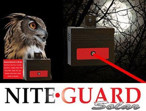 Nite Guard Solar Animal  and Predator Repellent