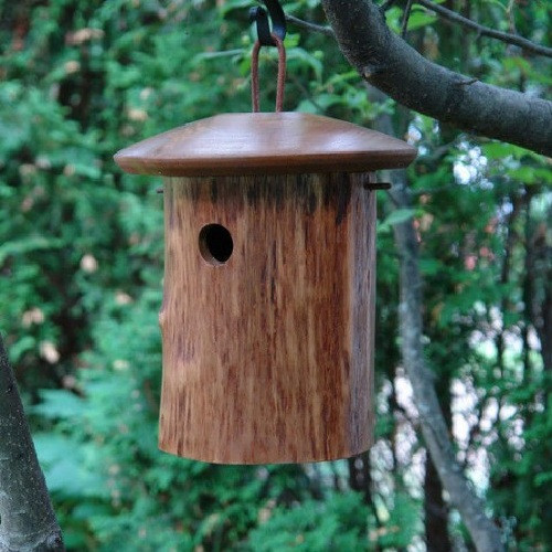 Byer of Maine Natural Chickadee Bird House Mango Tree Collection MTCD111