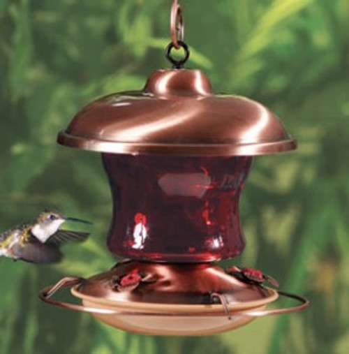 Audubon Brushed Copper Ruby Red Glass Hummingbird Feeder by Woodlink