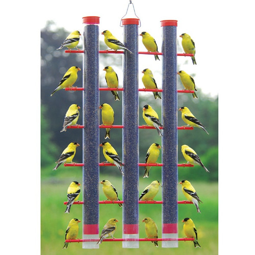 Songbird Essentials Finches Favorite Bird Feeder 3 Tube Finch Feeder SE324