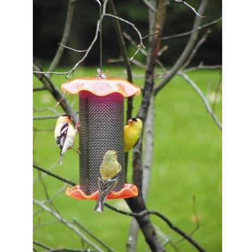 BIRDS CHOICE 1 QT. NEON ORANGE-SUNFLOWER BIRD FEEDER