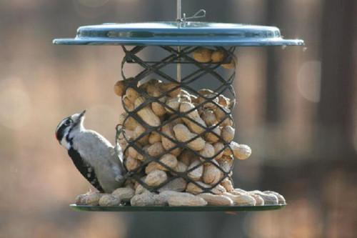 BIRDS CHOICE MAGNET MESH WHOLE PEANUT FEEDER BIRD FEEDER XWPF