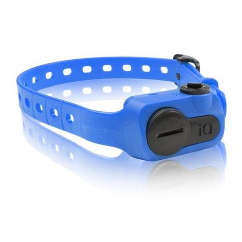 Dogtra iQ Bark Collar Blue