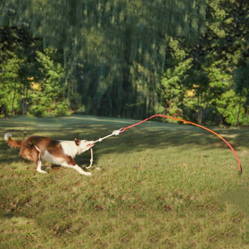 Tether Tug Large Outdoor Dog Toy Interactive Tugging Exercise Pull Toy LTT TWR