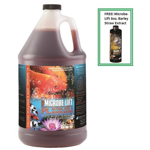 Microbe Lift PL 1 Gallon Koi Pond Beneficial Bacteria Clarifier 10PLG4 + Bonus FREE 8oz. Microbe Lift Barley Extract 10PLG4