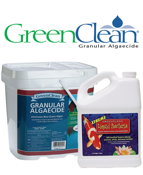 BioSafe GreenClean Algaecide 20lb PLUS GreenClean Xtreme Beneficial Bacteria