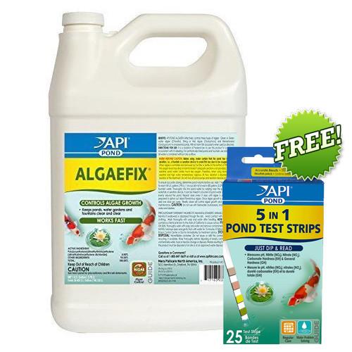 API PondCare AlgaeFix 1 Gallon Pond Algae Control 169C Plus API 5 in 1 Test Strips (AP169C + 164F)