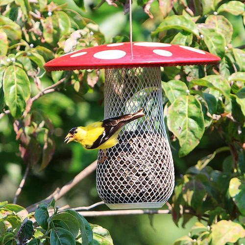 Perky Pet NO NO Mushroom Mesh Bird Seed Feeder MSB00344