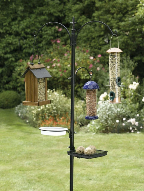 Rainbow Gardman World Source Par Wild Premium Bird Feeding Station Kit RG BA01131