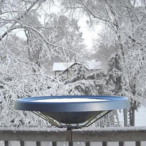 Birds Choice Black Heated Deck Mounted Bird Bath Ice Free To -25 Degrees Fahrenheit 125 Watt  BNHDECKBK
