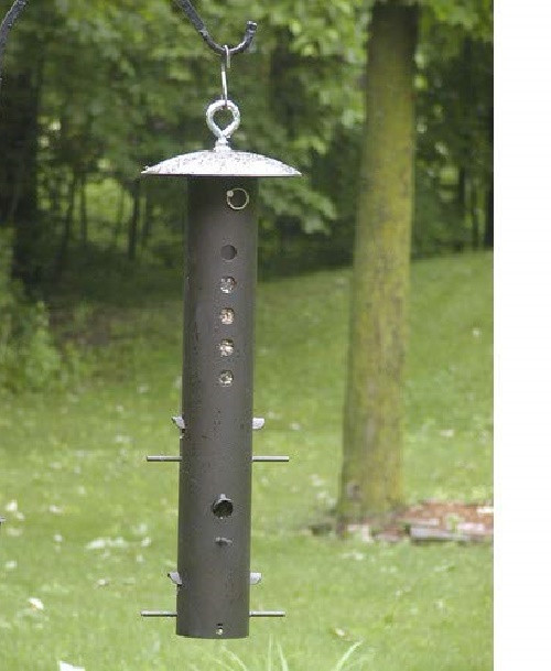 Birds Choice BEAR Proof Steel Bird Feeder 8 x 8 x 25 1/2, Brown ( BCBPF )