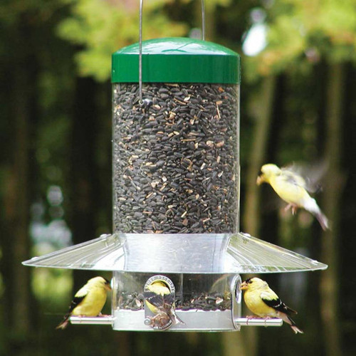 "Birds Choice 12"" Classic Hanging Bird Feeder With Squirrel Baffle / Weather Guard NP435"