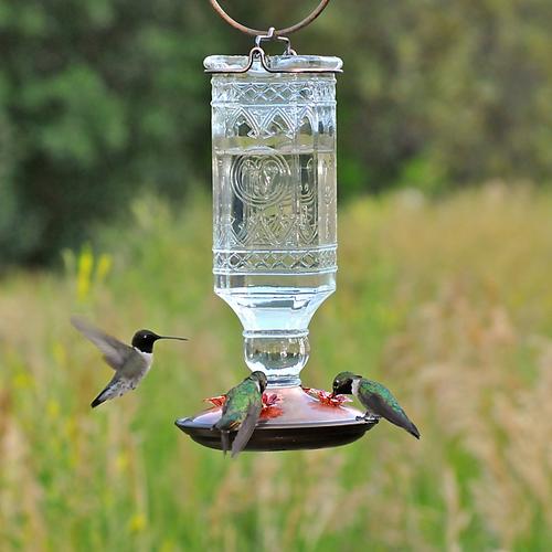 Perky Pet Clear Antique Glass Bottle Hummingbird Feeder 8118-2
