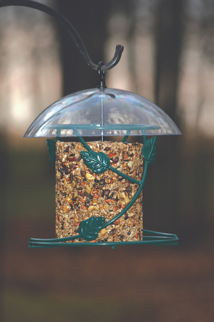 Birds Choice Hanging Seed Cylinder Bird Feeder SCF