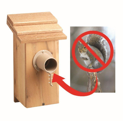 2 Pack Audubon Bird Guardian Screw on Predator Guard (SE997X2) (