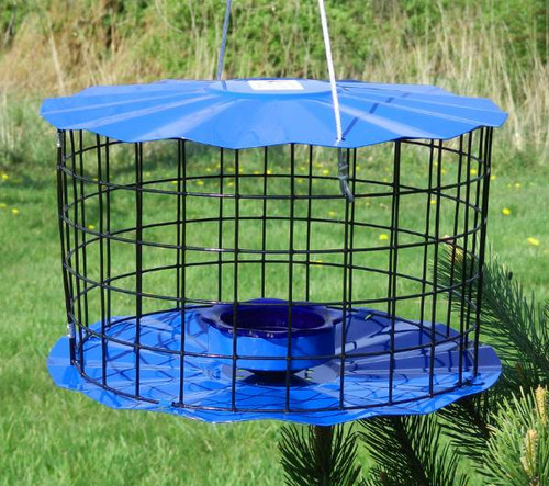 Nature House BBF1 Caged Bluebird Meal Worm Feeder Made In The USA (BBF1)