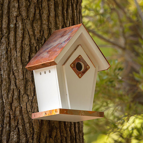 Fancy Home Products Copper Top Wren Bird House with Predator Guard (FHBH4FC)