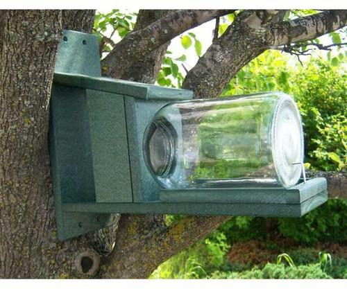 Songbird Essentials Recycled Plastic Squirrels in Jar Feeder SERUB412