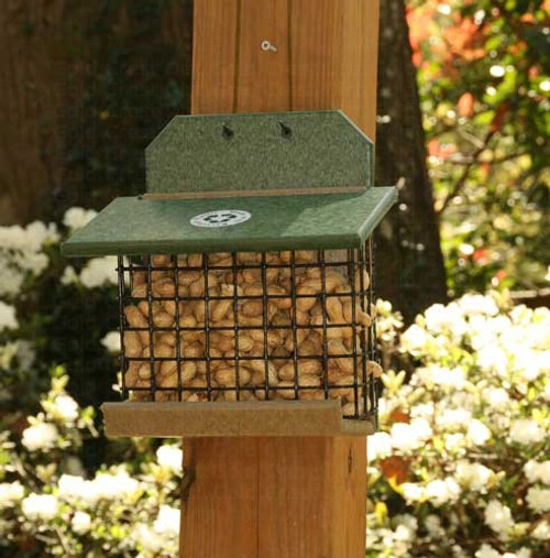 Songbird Essentials Hunter Driftwood Squirrel Feeder SERUBSQF100HD