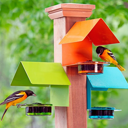 Courm Metal & Glass Bright Colored Bird Feeder Trio 3 Pack