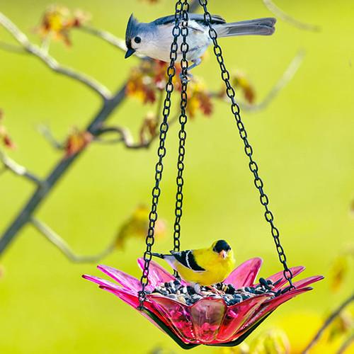 Couronne Co 8 inch Red Hanging Daisy Birdbath and Bird Feeder COURM35320006