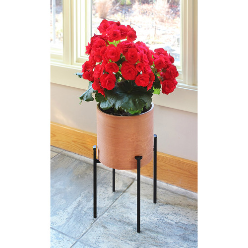 Achla Designs Solaria Collection Eileen Planter