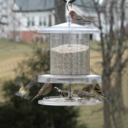 All Weather Bird Feeder Holds 4 Qts AWFF734