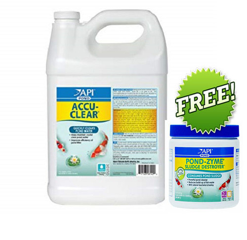 API Pond Care AccuClear 1 Gallon Pond Water Clarifier 142 C + FREE API Pondzyme 146