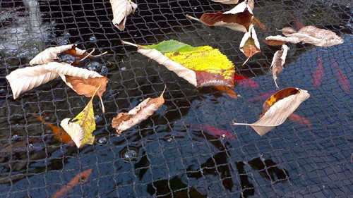 PondH2o Premium Black Pond Netting Woven Nylon 6' X 9' With Ground Stakes