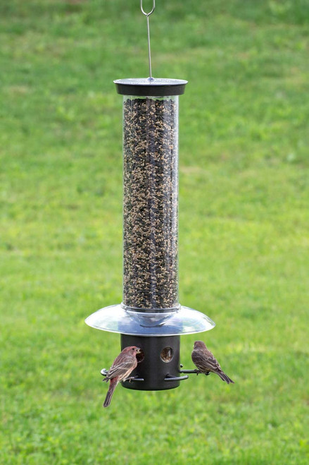 Droll Yankees BLOCKER Squirrel Proof Bird Feeder YB
