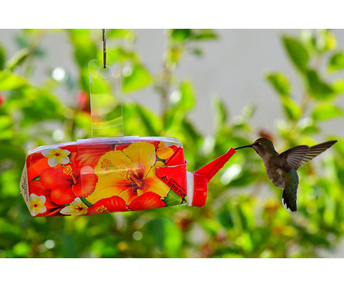 EZ Nectar All-Natural Hummingbird Feeder Ready to Use 11 oz