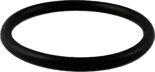 Aqua UV O-Ring For Union A40121