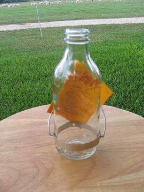 Best-1 Replacement 8 oz. Bottle for Hummingbird Feeder BESTR8