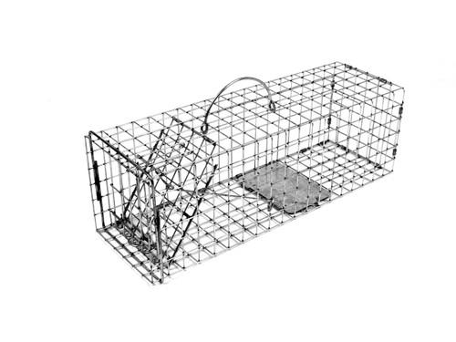 Tomahawk Live Trap 103 - Squirrel, Rat, Muskrat Trap with One Trap Door