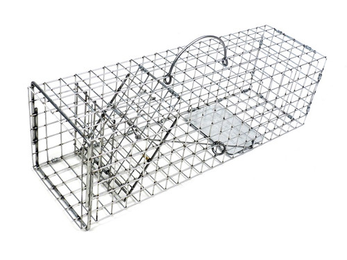 Tomahawk Live Trap 103F - Flush Mount Squirrel Trap with One Trap Door