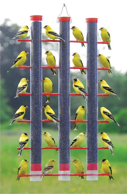 Finches Favorite Bird Feeder 3 Tube 36 Port Thistle Nyjer Feeder SE324 Y