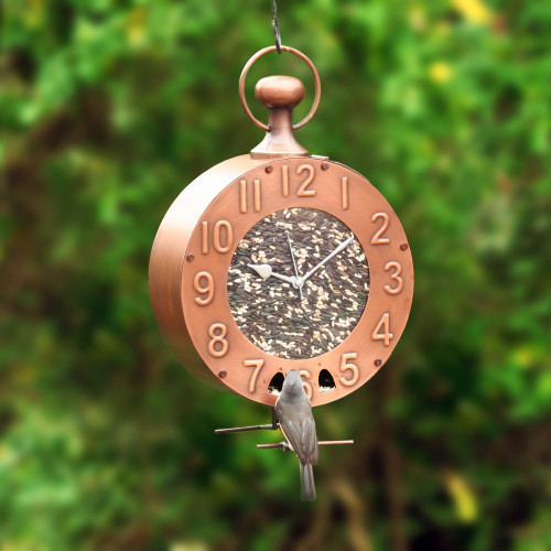 Good Directions Time Flys Clock Bird Feeder BF301VB