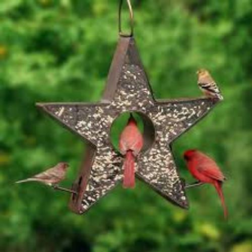 Good Directions Star Fly Thru Bird Feeder BF303VB