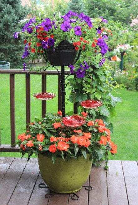 Hummingbird Container Gardening Flower Pot Pole and Basket Kit CGHH