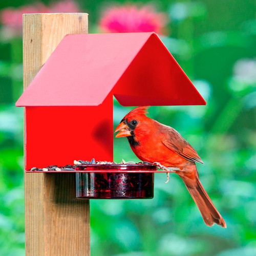Couronne Fence / Post Metal & Glass House Bird Feeder Red 447200R