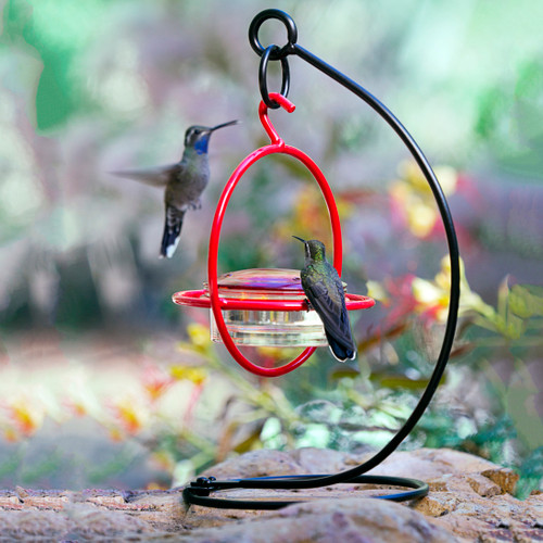 Couronne Sphere Hummingbird Feeder With Perch & Stand