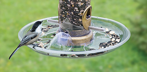 Aspects 449 Bird Feeder Auto Tray Quick Clean Seed Tray ASPECTS449